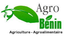 Agriculture et Agroalimentaire au Bnin