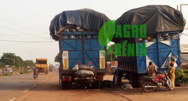 deforestation-camion-charbon-de-bois-combustible