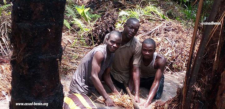 centre-d-actions-pour-la-securite-alimentaire-et-le-developpement-durable