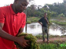 formation en agrobusiness pour les jeunes entrepreneurs béninois