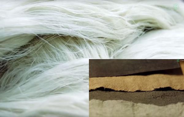 Cuir à base des fibres de la feuille de l'ananas